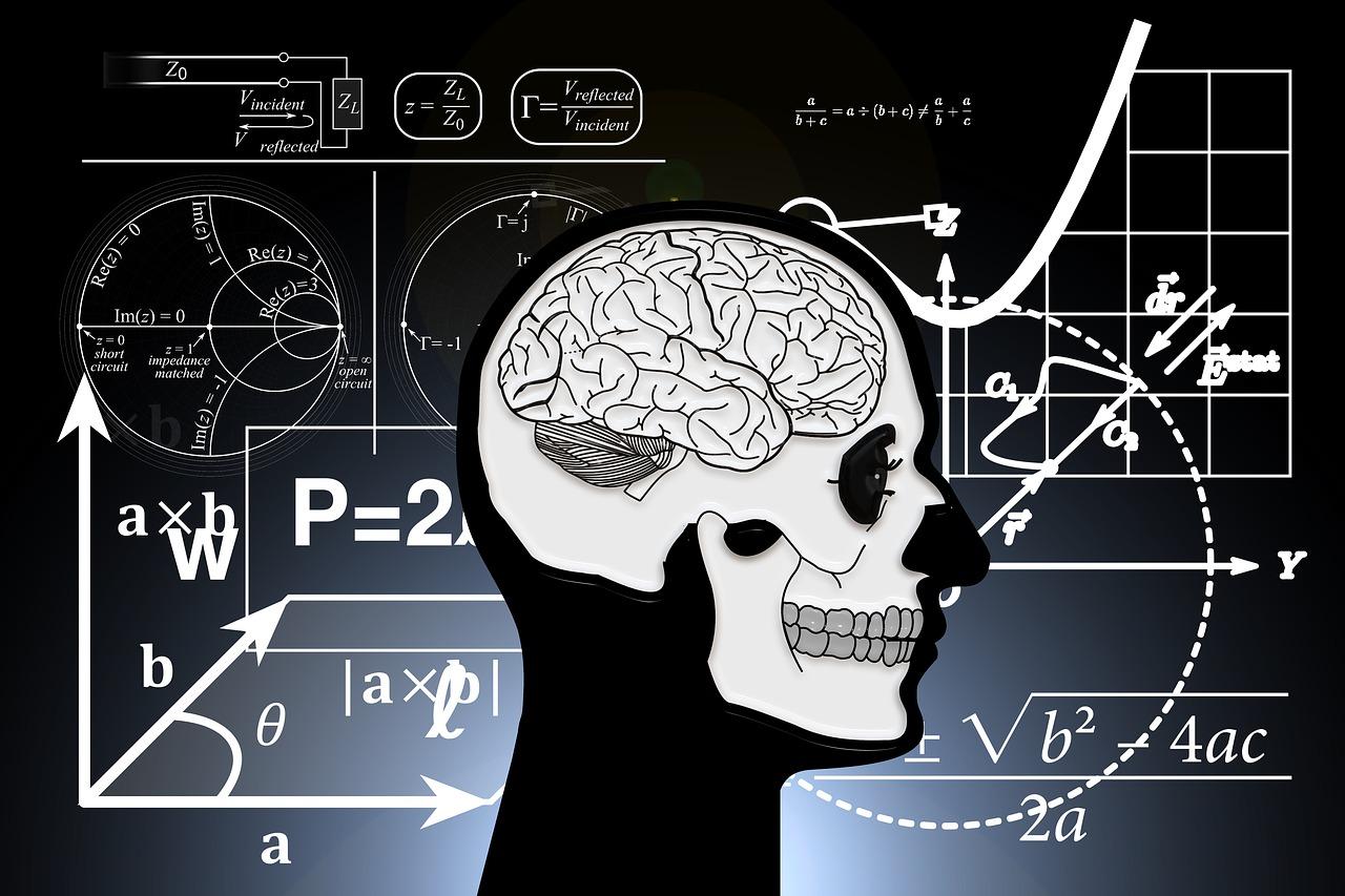 Brain - the next frontier.